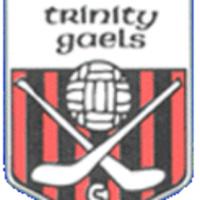 Trinity Gaels logo