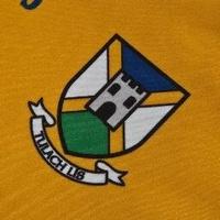 Tullylish GAA logo
